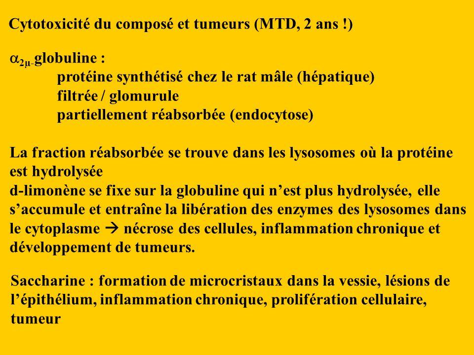Cytotoxicité du composé et tumeurs (MTD, 2 ans !) 2µ- globuline : protéine synthétisé chez le rat mâle (hépatique) filtrée / glomurule partiellement réabsorbée (endocytose) La fraction réabsorbée se trouve dans les lysosomes où la protéine est hydrolysée d-limonène se fixe sur la globuline qui nest plus hydrolysée, elle saccumule et entraîne la libération des enzymes des lysosomes dans le cytoplasme nécrose des cellules, inflammation chronique et développement de tumeurs.