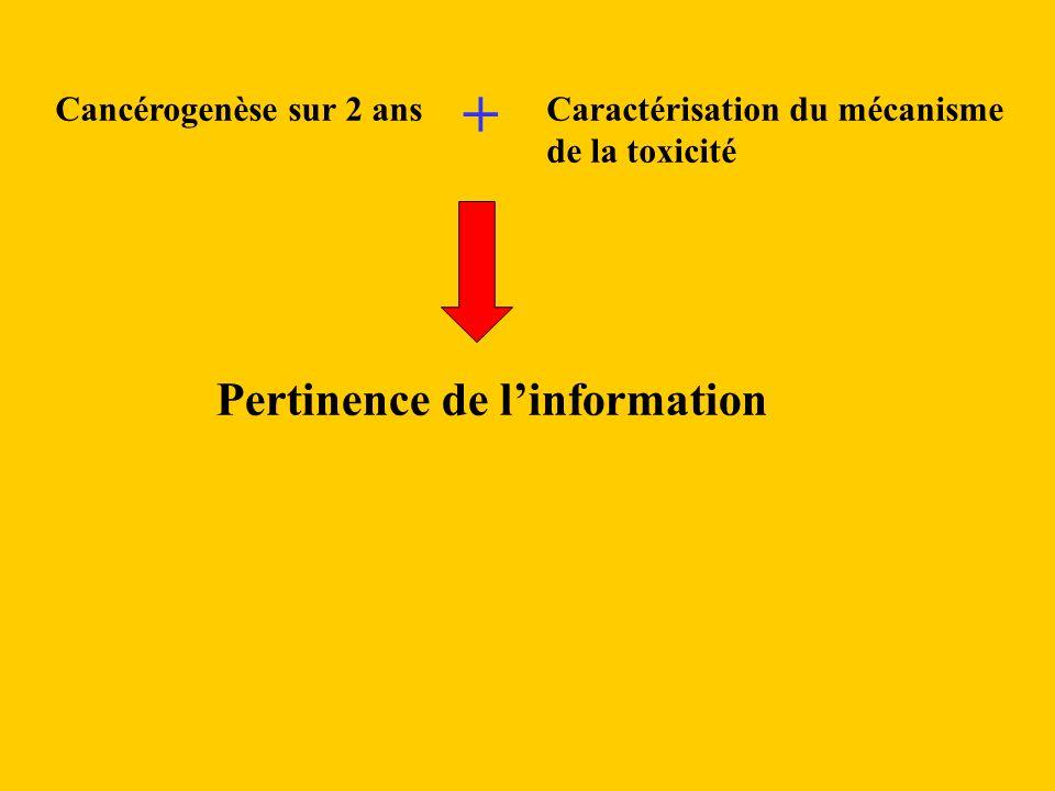 Caractérisation du mécanisme de la toxicité Pertinence de linformation Cancérogenèse sur 2 ans +
