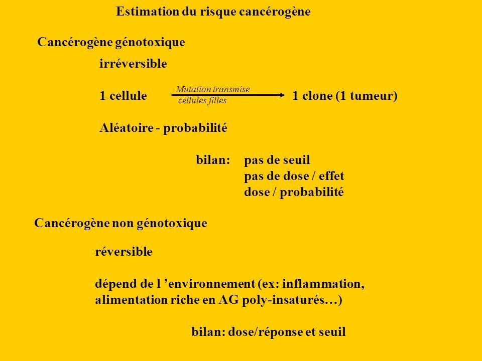 Estimation du risque cancérogène Cancérogène génotoxique irréversible 1 cellule1 clone (1 tumeur) Aléatoire - probabilité bilan: pas de seuil pas de dose / effet dose / probabilité Cancérogène non génotoxique réversible dépend de l environnement (ex: inflammation, alimentation riche en AG poly-insaturés…) bilan: dose/réponse et seuil Mutation transmise cellules filles