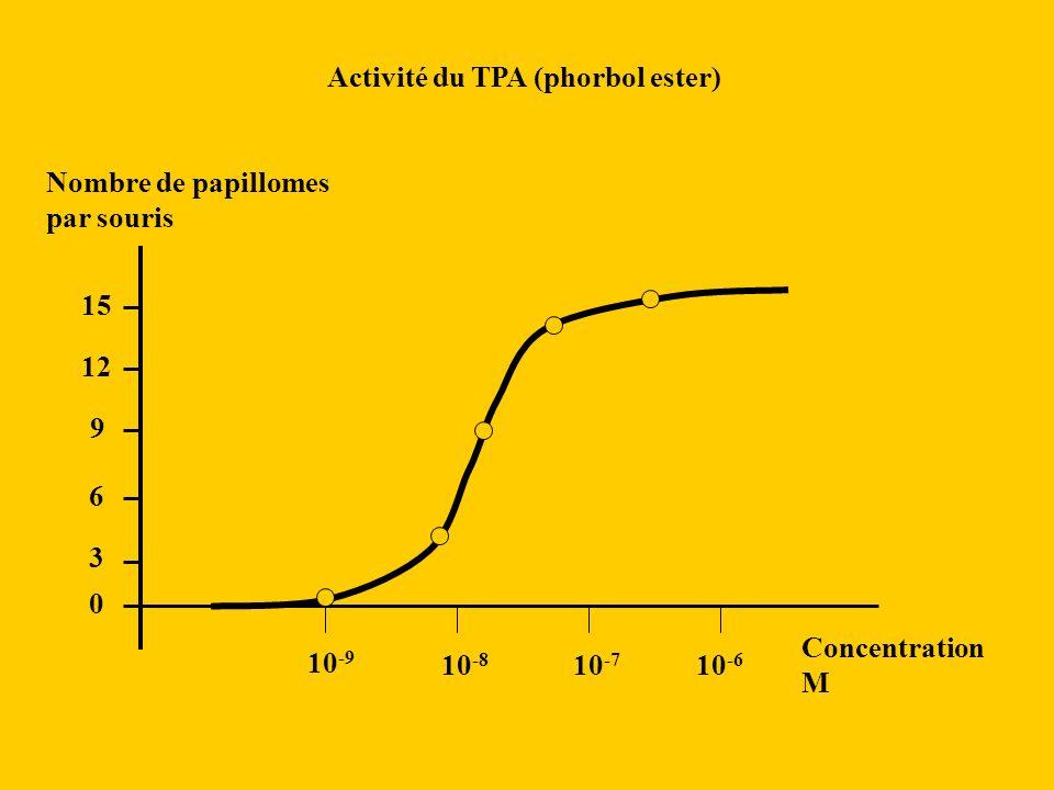 10 -9 10 -8 10 -7 10 -6 Activité du TPA (phorbol ester) 0 15 3 6 9 12 Nombre de papillomes par souris Concentration M