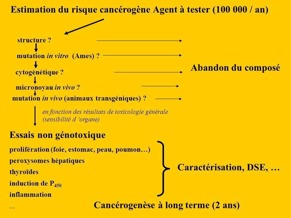 Estimation du risque cancérogène Agent à tester (100 000 / an) structure .