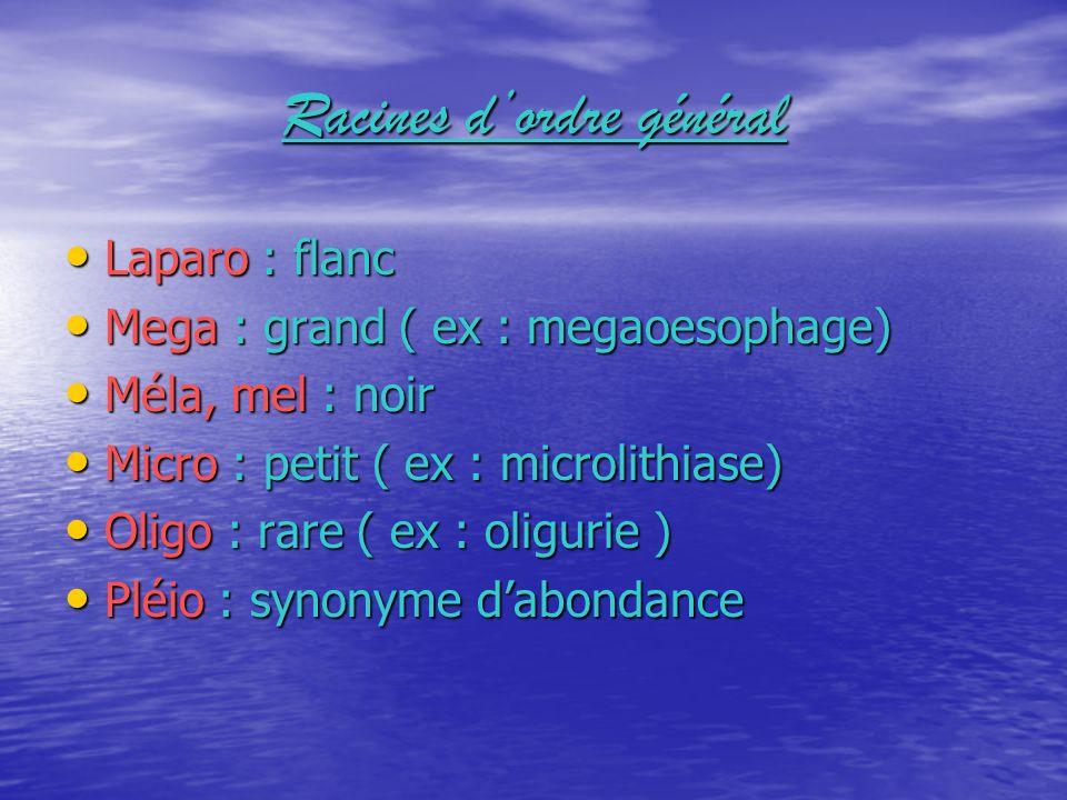 Laparo : flanc Mega : grand ( ex : megaoesophage) Méla, mel : noir Micro : petit ( ex : microlithiase) Oligo : rare ( ex : oligurie ) Pléio : synonyme dabondance
