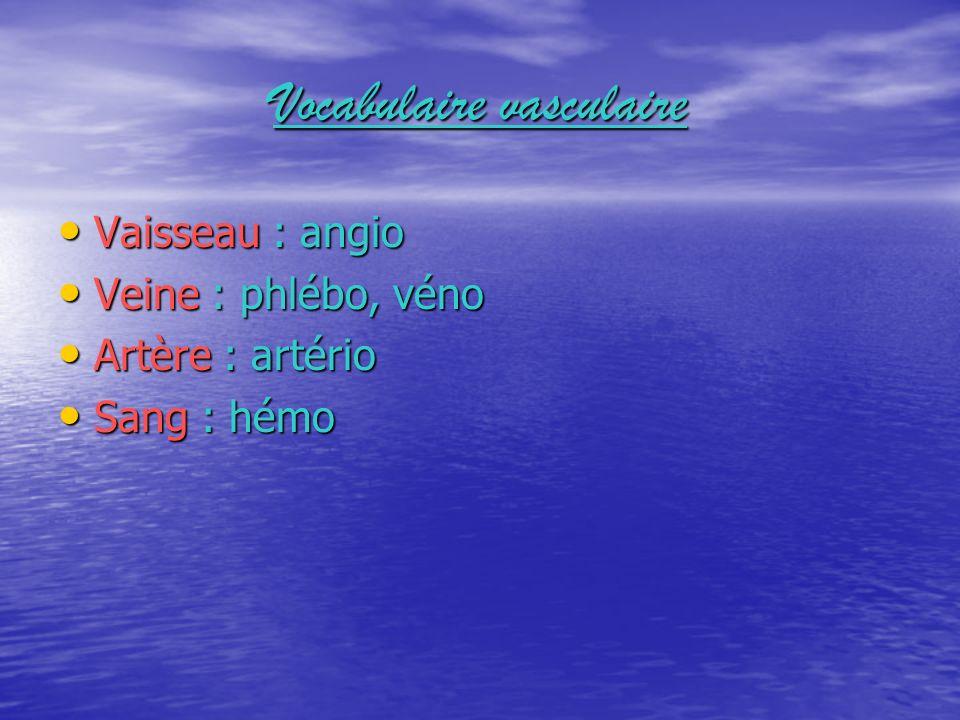 Vocabulaire vasculaire Vaisseau : angio Vaisseau : angio Veine : phlébo, véno Veine : phlébo, véno Artère : artério Artère : artério Sang : hémo Sang