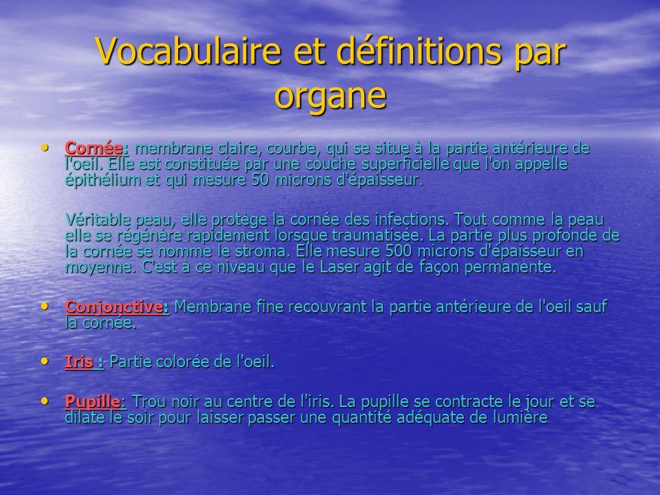 Vocabulaire et définitions par organe Cornée: membrane claire, courbe, qui se situe à la partie antérieure de l'oeil. Elle est constituée par une couc