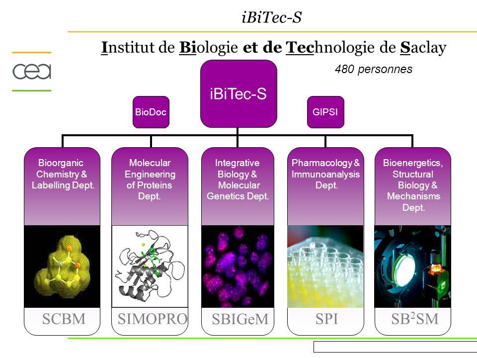Evaluation AERES March 16 th 2010 iBiTec-S Institut de Biologie et de Technologie de Saclay iBiTec-S Pharmacology & Immunoanalysis Dept.