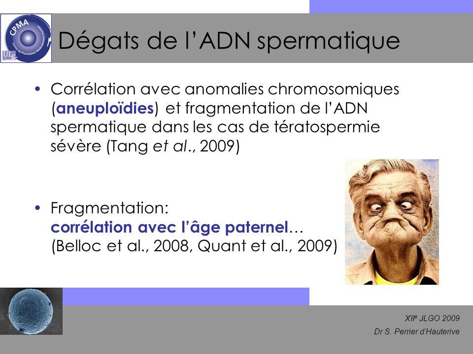 XII e JLGO 2009 Dr S. Perrier dHauterive Dégats de lADN spermatique Corrélation avec anomalies chromosomiques ( aneuploïdies ) et fragmentation de lAD