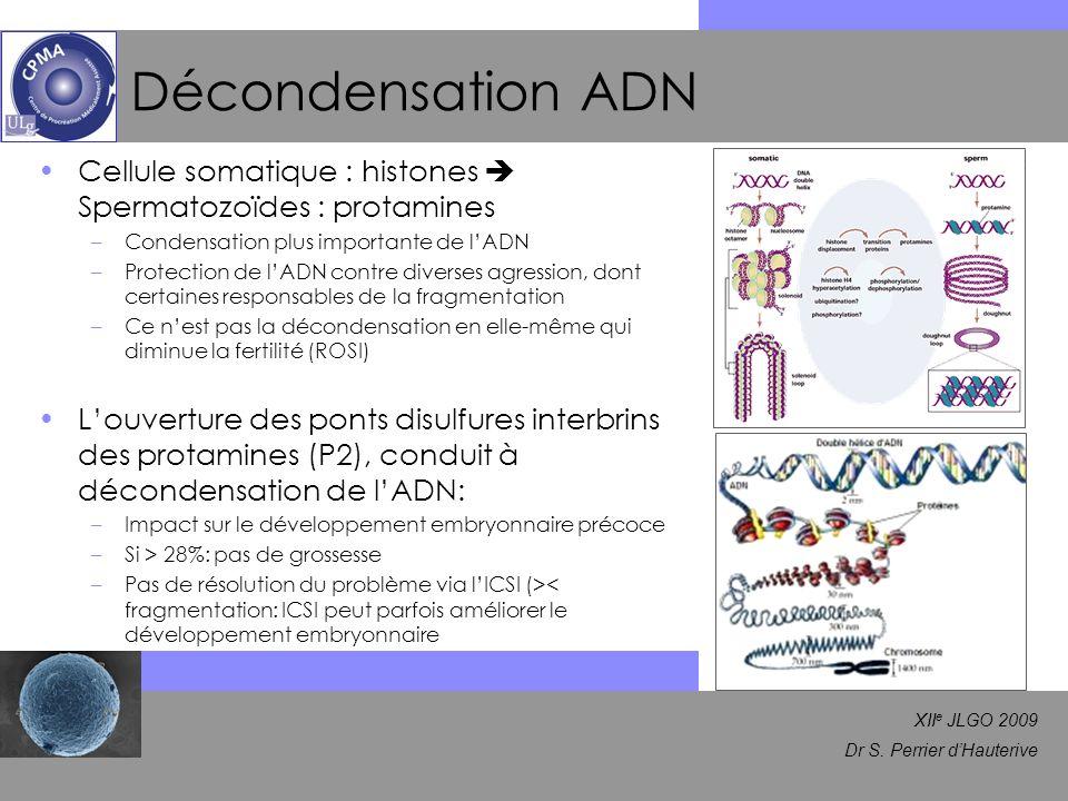 XII e JLGO 2009 Dr S. Perrier dHauterive Décondensation ADN Cellule somatique : histones Spermatozoïdes : protamines –Condensation plus importante de