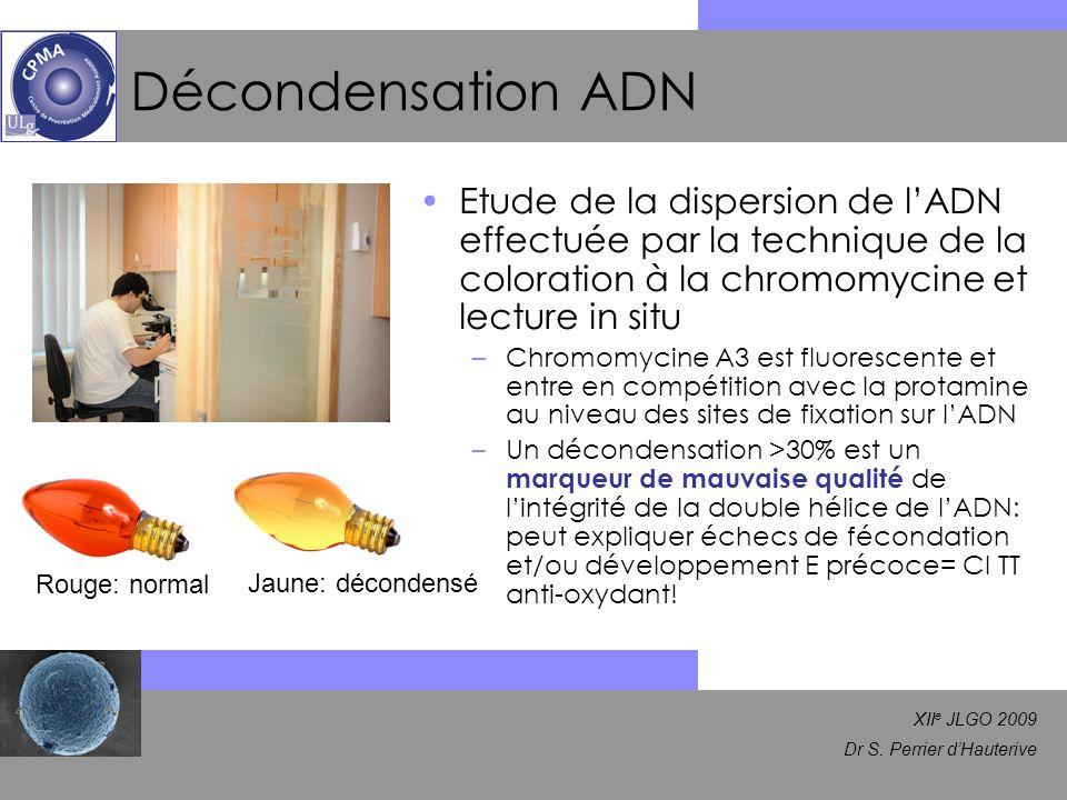 XII e JLGO 2009 Dr S. Perrier dHauterive Décondensation ADN Etude de la dispersion de lADN effectuée par la technique de la coloration à la chromomyci