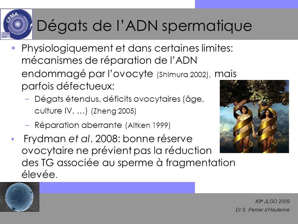 XII e JLGO 2009 Dr S. Perrier dHauterive Dégats de lADN spermatique Physiologiquement et dans certaines limites: mécanismes de réparation de lADN endo