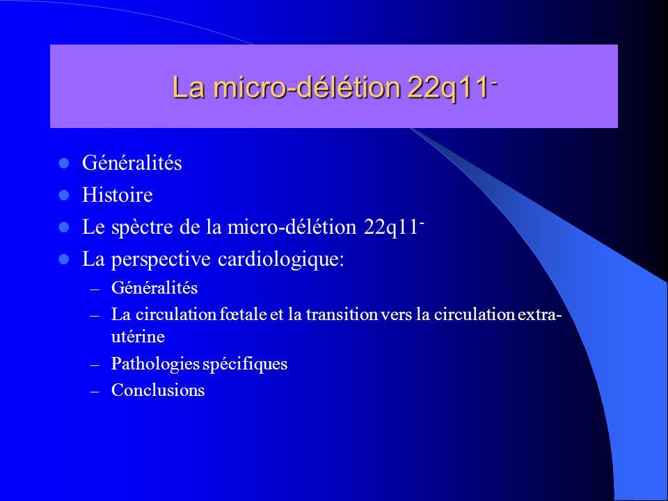 Généralités Histoire Le spèctre de la micro-délétion 22q11 - La perspective cardiologique: – Généralités – La circulation fœtale et la transition vers