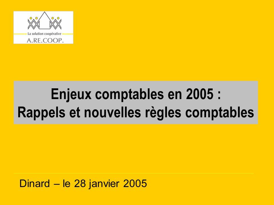 Enjeux comptables en 2005 : Rappels et nouvelles règles comptables Dinard – le 28 janvier 2005