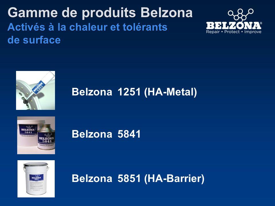 Gamme de produits Belzona Activés à la chaleur et tolérants de surface Belzona 5851 (HA-Barrier) Belzona 5841 Belzona 1251 (HA-Metal)