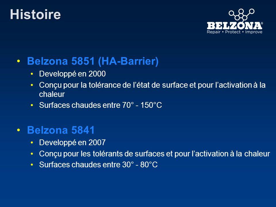 Histoire Belzona 5851 (HA-Barrier) Developpé en 2000 Conçu pour la tolérance de létat de surface et pour lactivation à la chaleur Surfaces chaudes ent