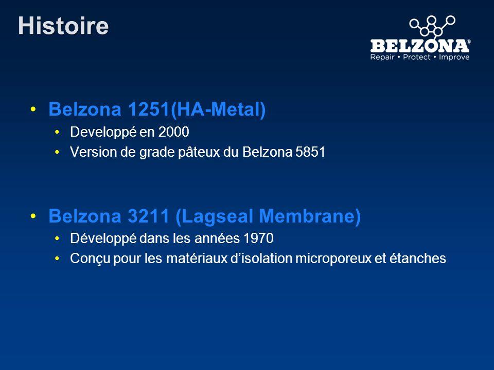 Belzona 1251(HA-Metal) Developpé en 2000 Version de grade pâteux du Belzona 5851 Belzona 3211 (Lagseal Membrane) Développé dans les années 1970 Conçu