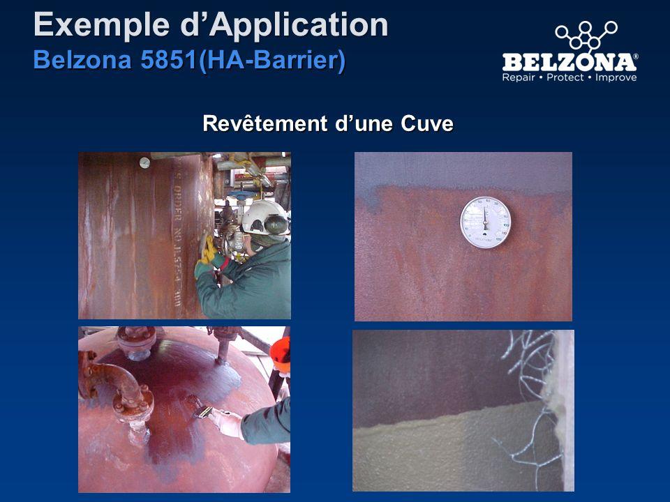 Exemple dApplication Belzona 5851(HA-Barrier) Revêtement dune Cuve