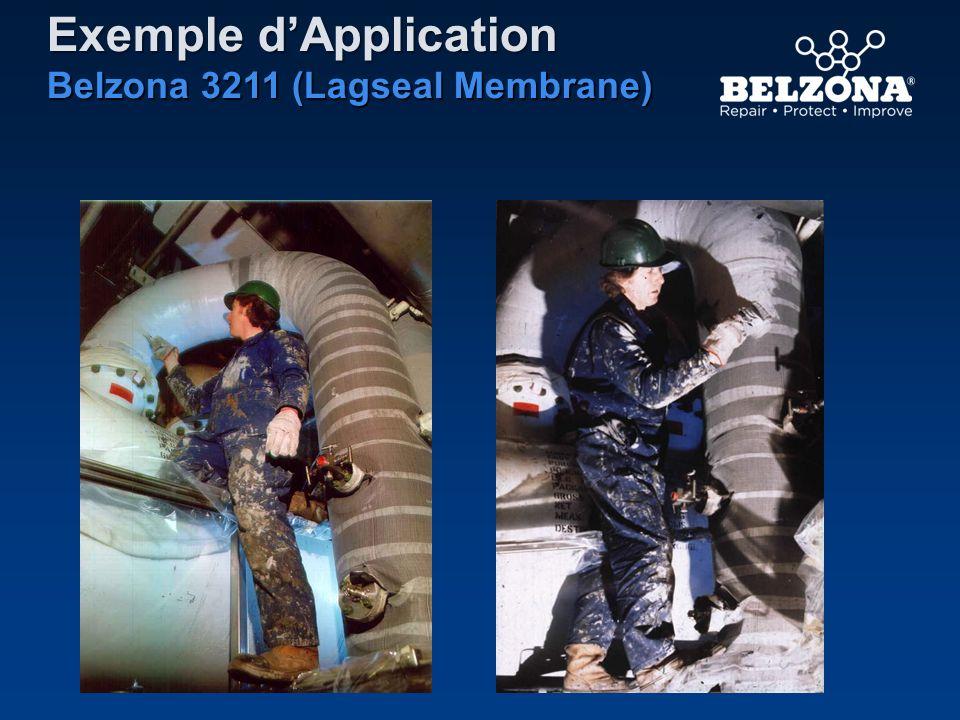 Exemple dApplication Belzona 3211 (Lagseal Membrane)