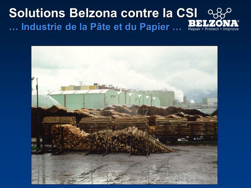 Solutions Belzona contre la CSI … Industrie de la Pâte et du Papier …