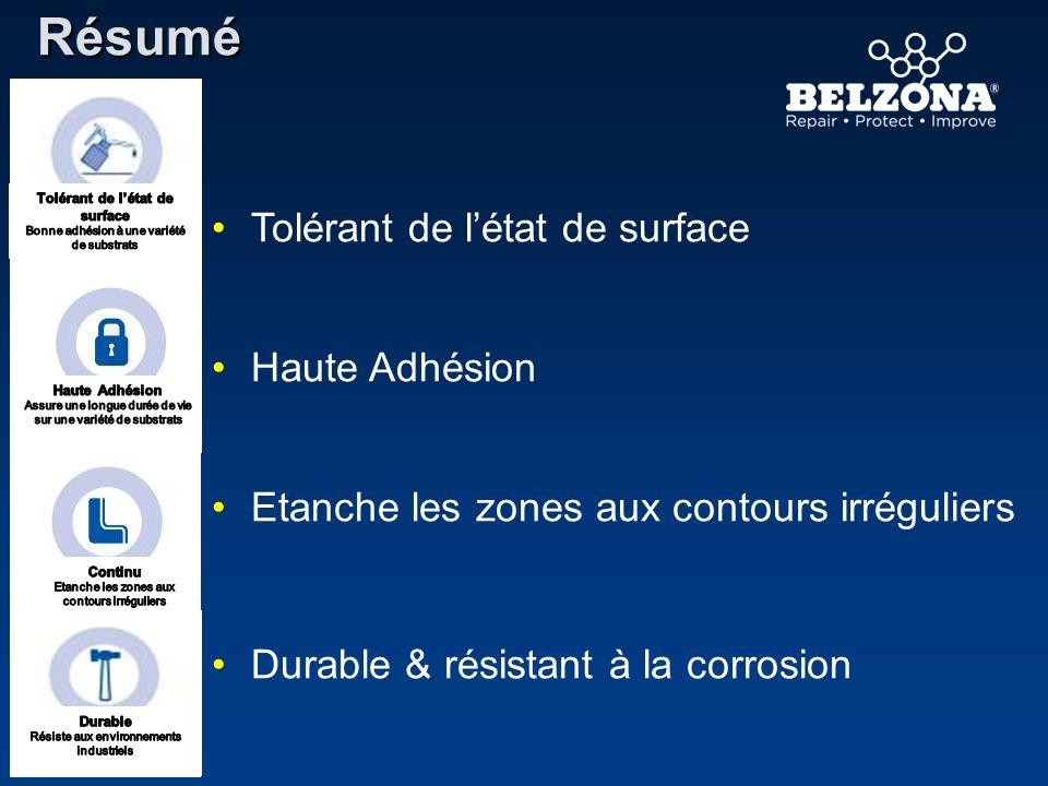 Résumé Etanche les zones aux contours irréguliers Tolérant de létat de surface Durable & résistant à la corrosion Haute Adhésion