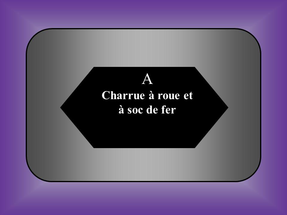 A:B: #19 Outilllage utiliser pour labourer en profondeur Les sols lourds et humides.