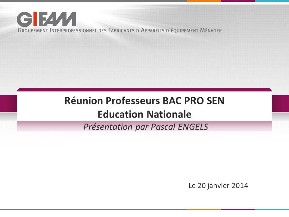 Le 20 janvier 2014 Réunion Professeurs BAC PRO SEN Education Nationale Présentation par Pascal ENGELS