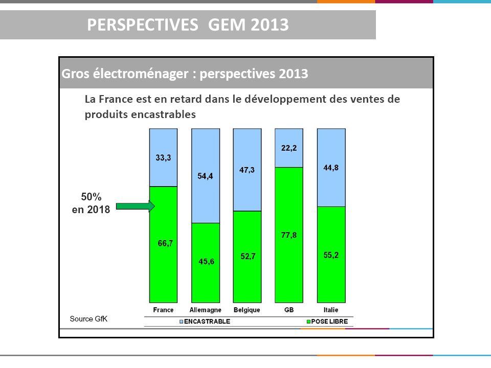PERSPECTIVES GEM 2013