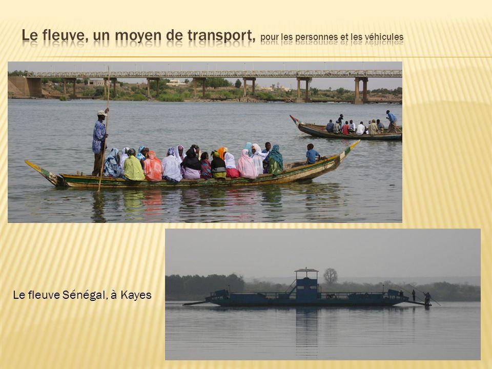 Le fleuve Sénégal, à Kayes