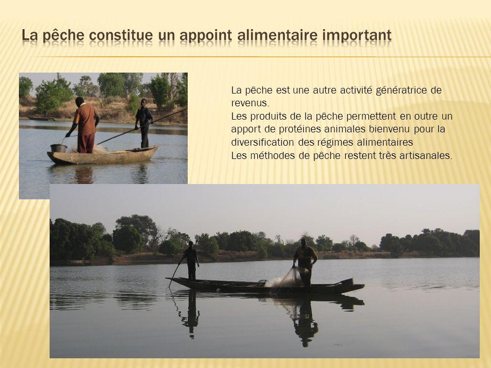 La pêche est une autre activité génératrice de revenus. Les produits de la pêche permettent en outre un apport de protéines animales bienvenu pour la