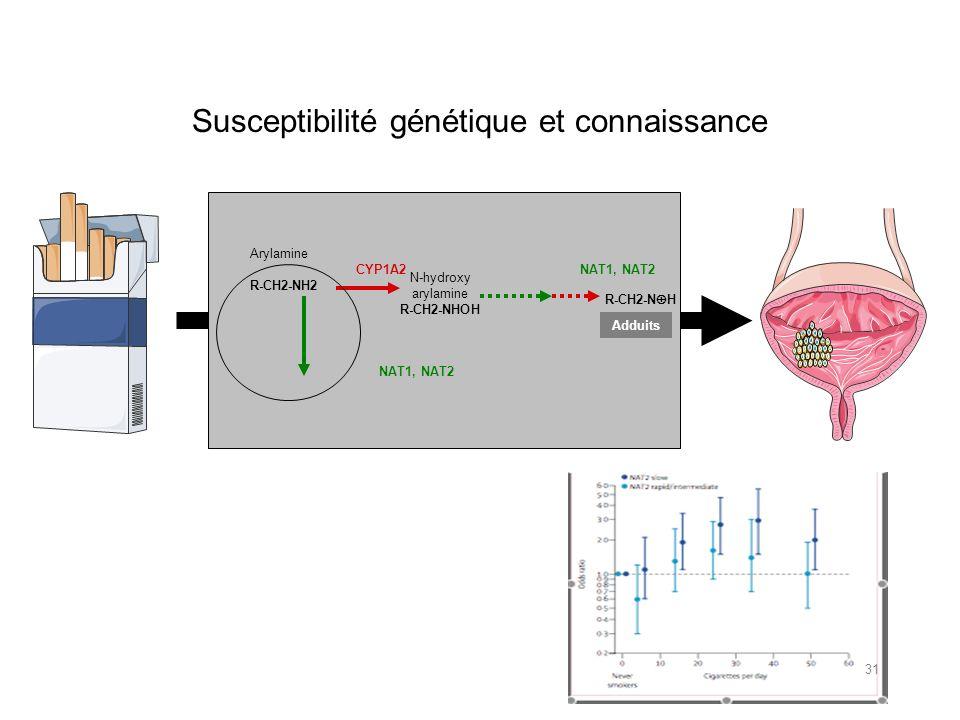 Susceptibilité génétique et connaissance R-CH2-N H Arylamine R-CH2-NH2 N-hydroxy arylamine R-CH2-NHOH CYP1A2NAT1, NAT2 Adduits 31
