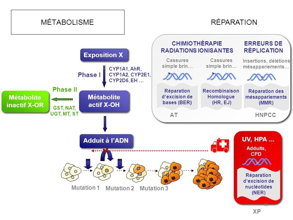 MÉTABOLISME Mutation 1 Mutation 2 Mutation 3 Exposition X Métabolite actif X-OH Adduit à lADN Phase I CYP1A1, AhR, CYP1A2, CYP2E1, CYP2D6, EH … Phase II GST, NAT, UGT, MT, ST Métabolite inactif X-OR XP Adduits, CPD Réparation dexcision de nucléotides (NER) UV, HPA...