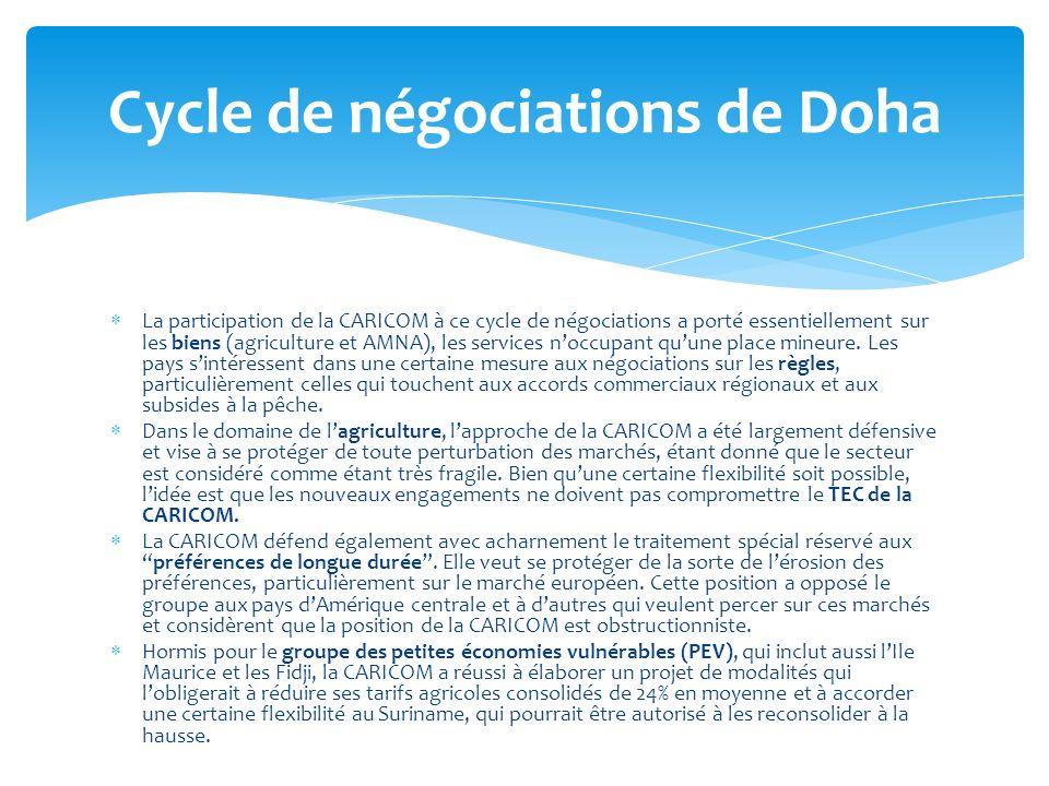 La participation de la CARICOM à ce cycle de négociations a porté essentiellement sur les biens (agriculture et AMNA), les services noccupant quune pl