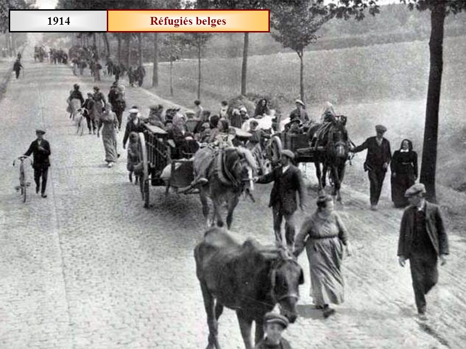Septembre 1916Front de lYser (Belgique) Abri de mitrailleurs à Kaaskerke