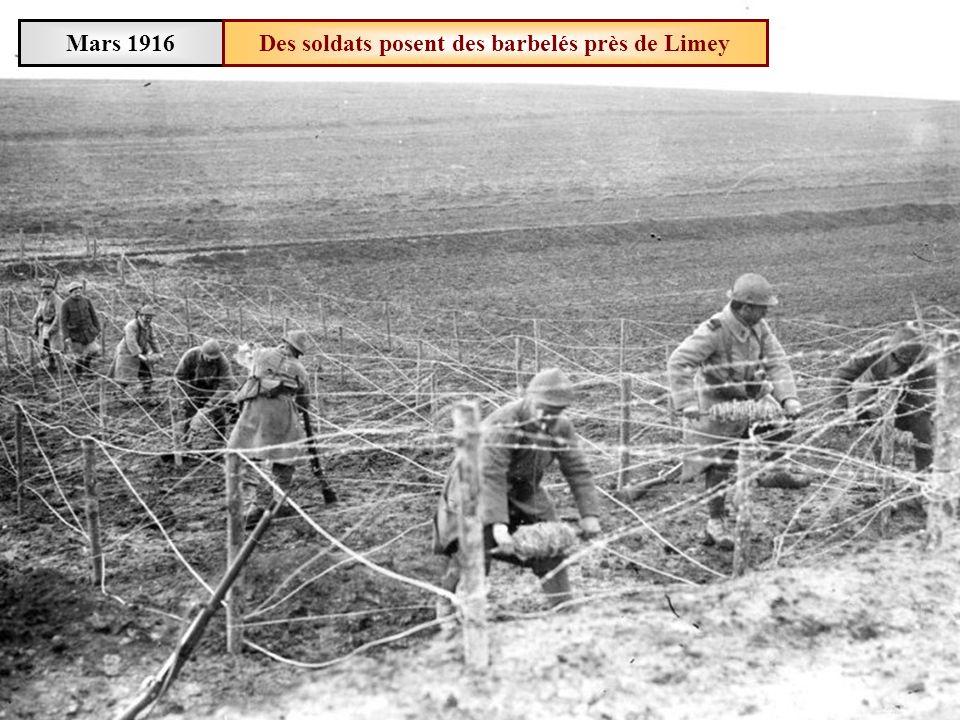 Mars 1916 Des soldats préparent du fil de fer barbelé à Limey