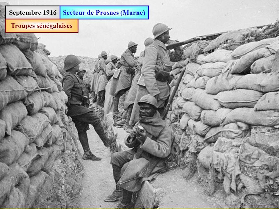 Septembre 1916Secteur de Prosnes (Marne) Soldats de la « territoriale » (plus de 45 ans)