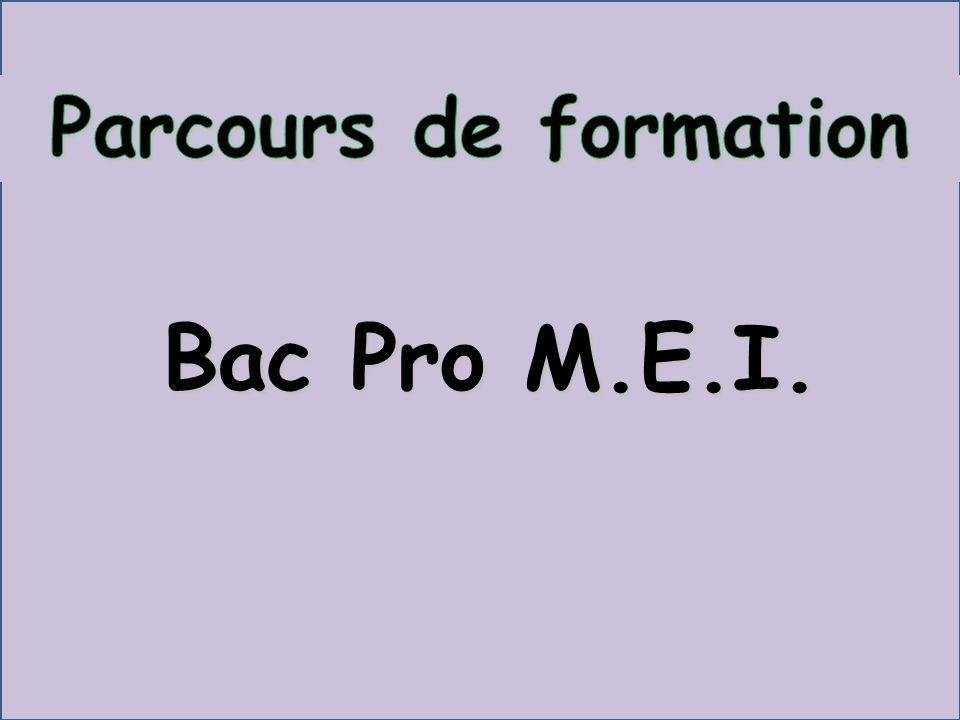 BAC PRO M.E.I 3 ans Parcours de formation Des périodes de formation en milieu professionnel (22 semaines sur 3 ans) Cycles de 6-7 semaines dactivités entre chaque période de petites vacances Quatre phases : Apprentissage Approfondissement Maîtrise.