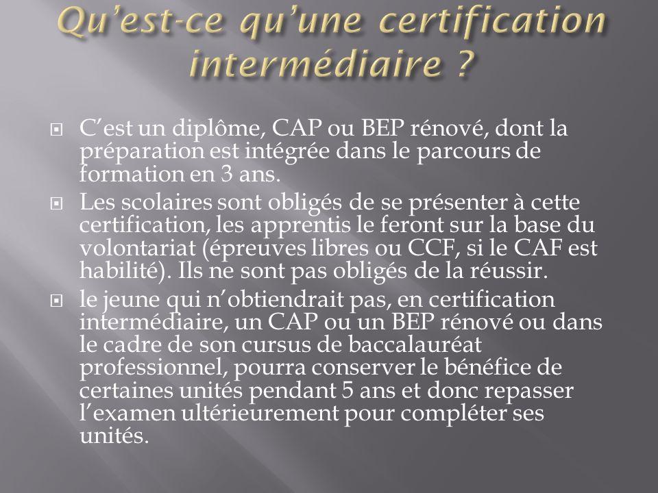 Cest un diplôme, CAP ou BEP rénové, dont la préparation est intégrée dans le parcours de formation en 3 ans. Les scolaires sont obligés de se présente