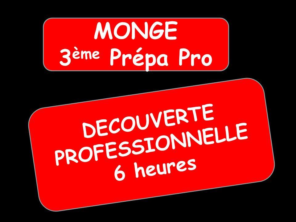DECOUVERTE PROFESSIONNELLE 6 heures MONGE 3 ème Prépa Pro