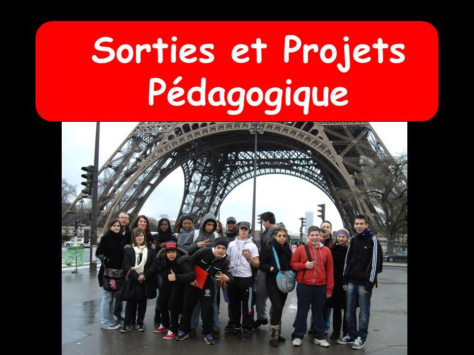 Sorties et Projets Pédagogique Cinéma / Théatre/