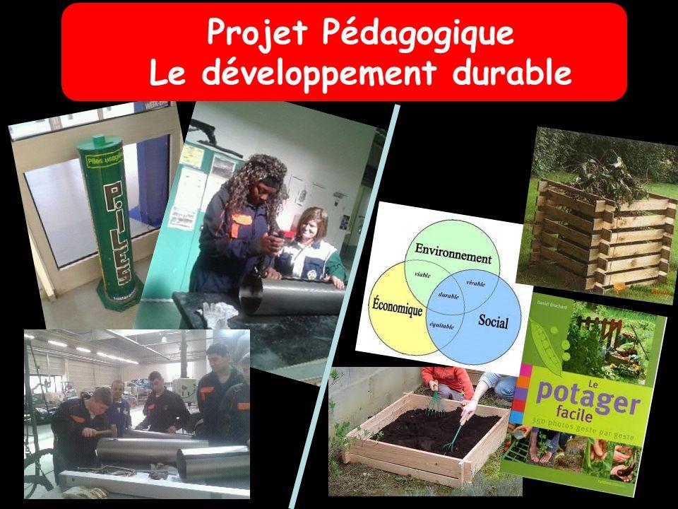 Projet Pédagogique Le développement durable
