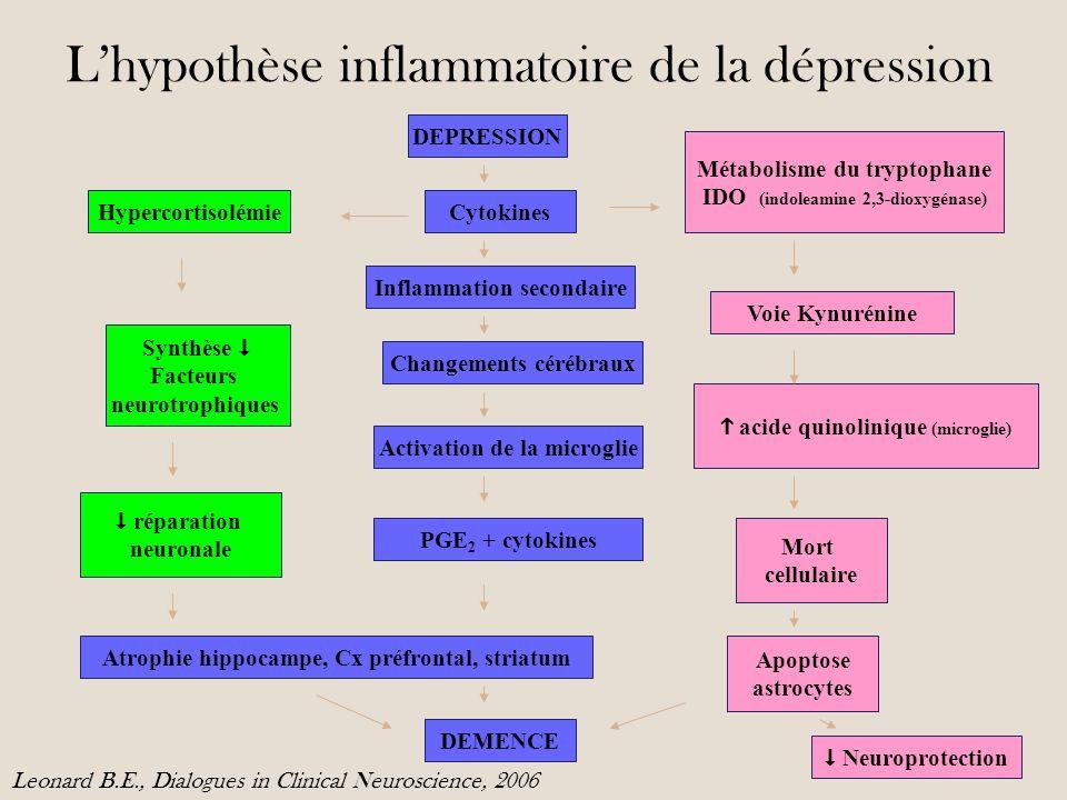 Lhypothèse inflammatoire de la dépression DEPRESSION Cytokines Métabolisme du tryptophane IDO (indoleamine 2,3-dioxygénase) Hypercortisolémie Inflammation secondaire Changements cérébraux Activation de la microglie Atrophie hippocampe, Cx préfrontal, striatum DEMENCE Synthèse Facteurs neurotrophiques réparation neuronale Voie Kynurénine acide quinolinique (microglie) Mort cellulaire Apoptose astrocytes Neuroprotection PGE 2 + cytokines Leonard B.E., Dialogues in Clinical Neuroscience, 2006