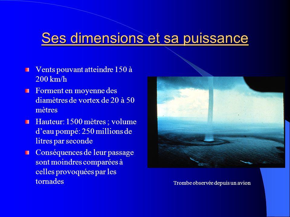 Ses dimensions et sa puissance Vents pouvant atteindre 150 à 200 km/h Forment en moyenne des diamètres de vortex de 20 à 50 mètres Hauteur: 1500 mètre