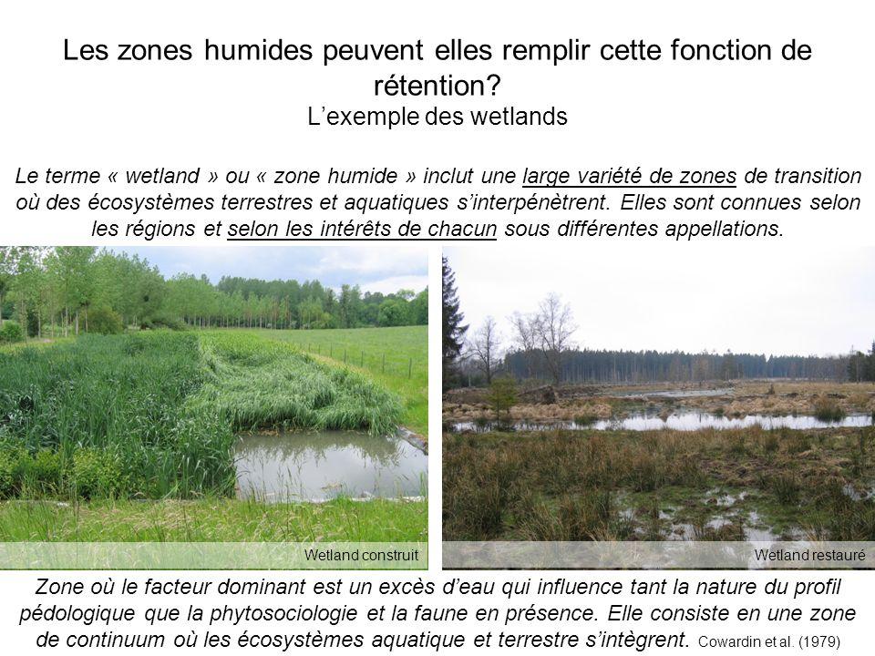 Les zones humides peuvent elles remplir cette fonction de rétention.