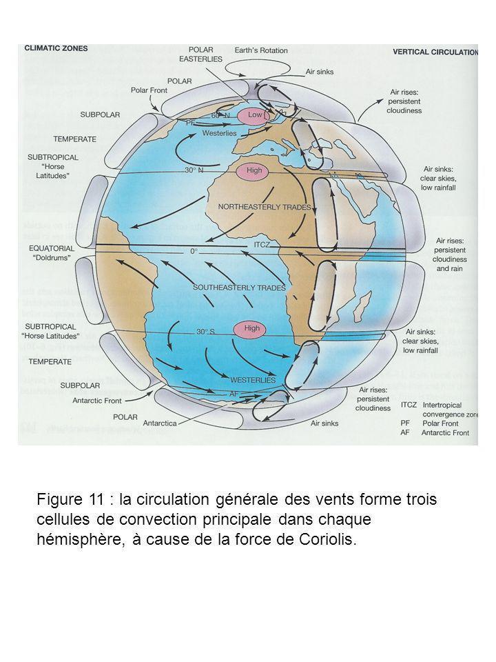 Figure 11 : la circulation générale des vents forme trois cellules de convection principale dans chaque hémisphère, à cause de la force de Coriolis.