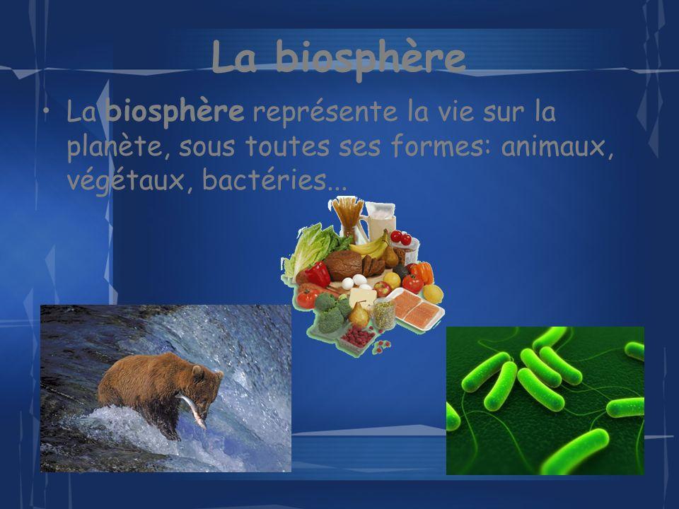 La biosphère La biosphère représente la vie sur la planète, sous toutes ses formes: animaux, végétaux, bactéries...