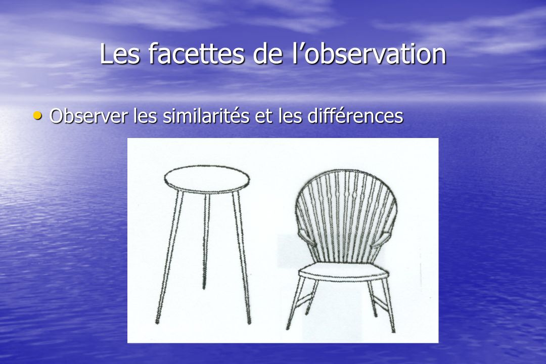 Les facettes de lobservation Observer les similarités et les différences Observer les similarités et les différences