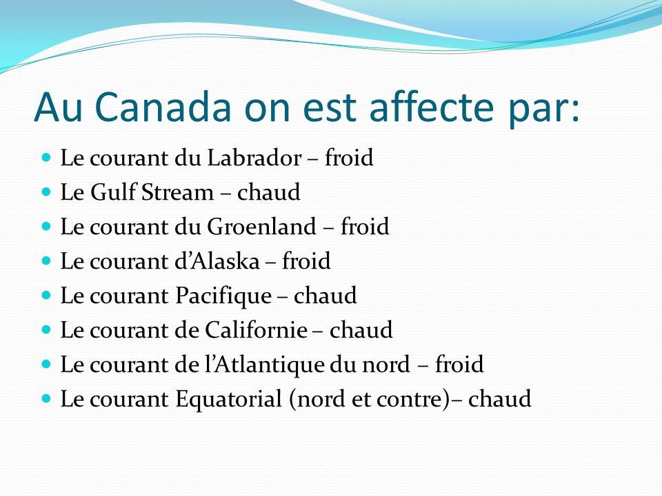Au Canada on est affecte par: Le courant du Labrador – froid Le Gulf Stream – chaud Le courant du Groenland – froid Le courant dAlaska – froid Le cour