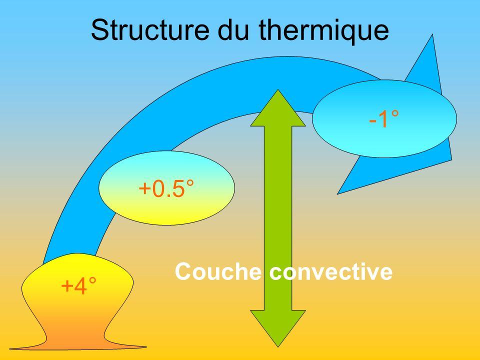 Structure du thermique +0.5° -1° +4° Couche convective