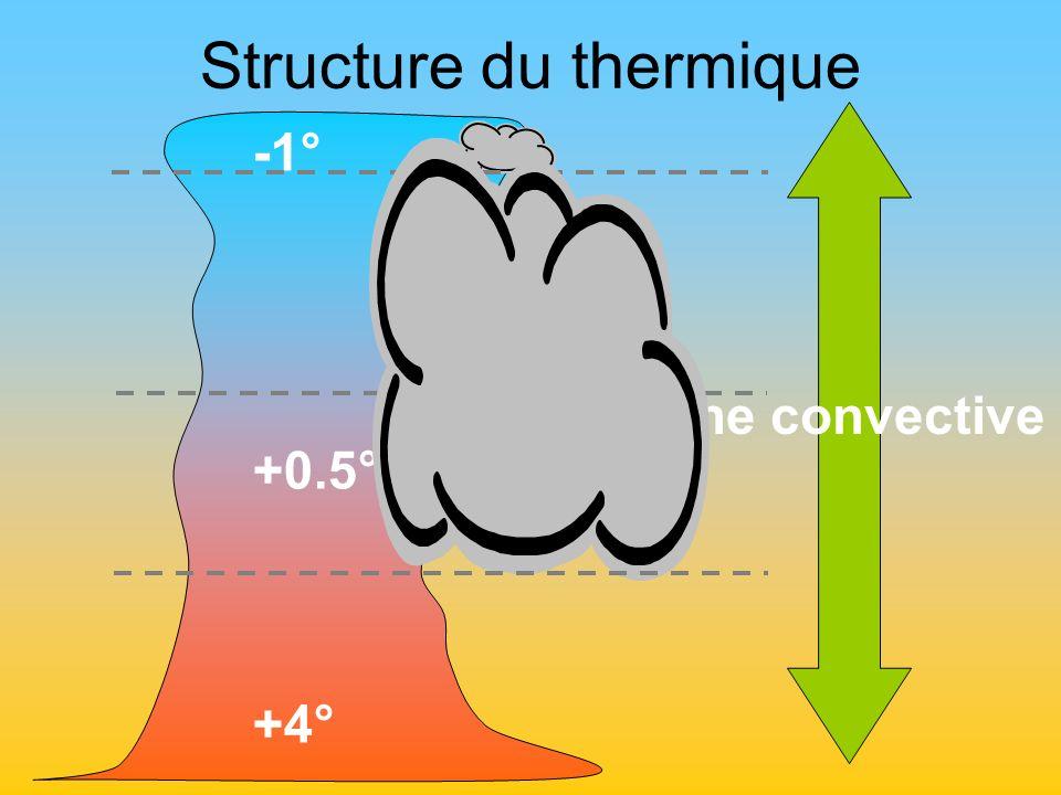 Structure du thermique Couche convective -1° +0.5° +4°