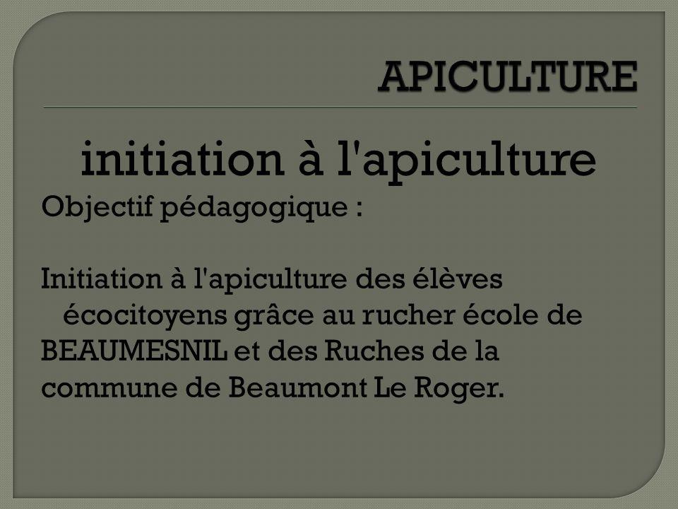 initiation à l'apiculture Objectif pédagogique : Initiation à l'apiculture des élèves écocitoyens grâce au rucher école de BEAUMESNIL et des Ruches de