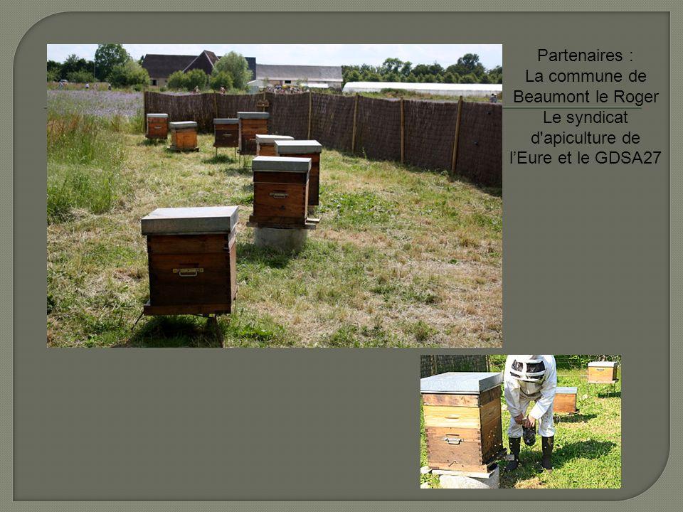 Partenaires : La commune de Beaumont le Roger Le syndicat d'apiculture de lEure et le GDSA27