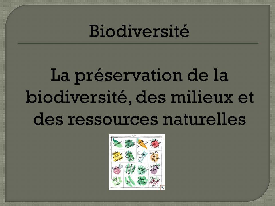 Biodiversité La préservation de la biodiversité, des milieux et des ressources naturelles